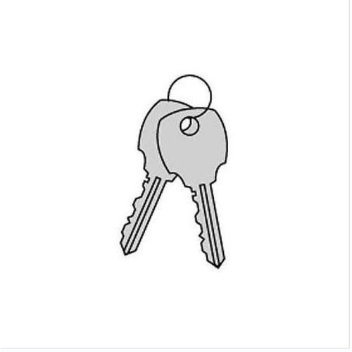 Salsbury Industries 88899 Key Blanks Box for Built in Locks of Modular Lockers (Pack of 50)