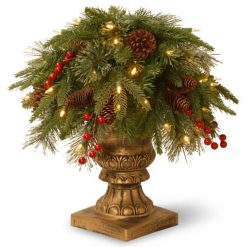 The Holiday Aisle Porch Bush Foliage Topiary in Decorative Urn