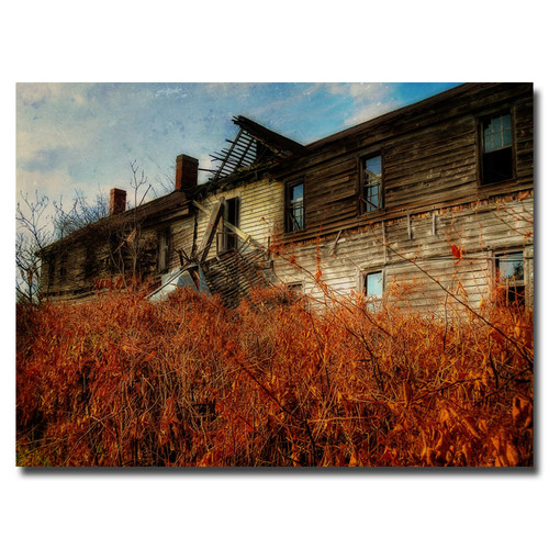 Trademark Global Lois Bryan 'Forgotten Hotel' Canvas Art [Overall Dimensions : 16x24]