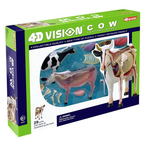 4D Vision ...