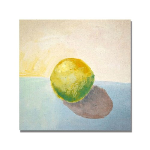 Trademark Global Michelle Calkins 'Yellow Lemon Still Life' Canvas Art [Overall Dimensions : 24x24]