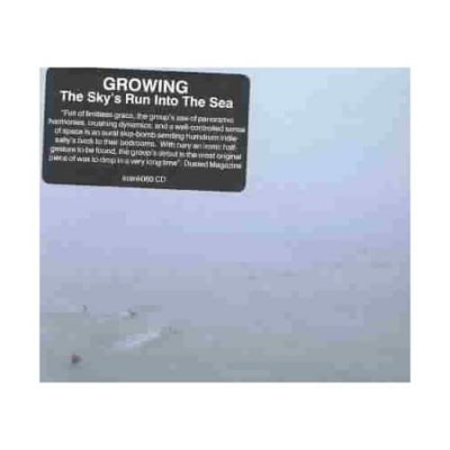 Sky's Run into the Sea [CD]