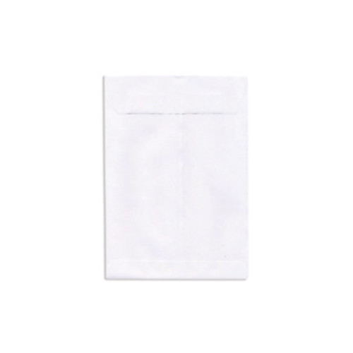 JAM Paper Open-End Catalog Envelopes With Gummed Closure, 9
