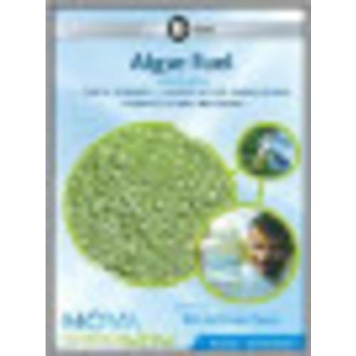 NOVA: scienceNOW: 2009 Episode 6 - Algae Fuel [DVD]