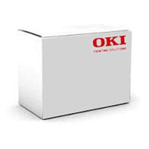 OKI Data 70063701 256MB User Flash Memory for MB700 70063701