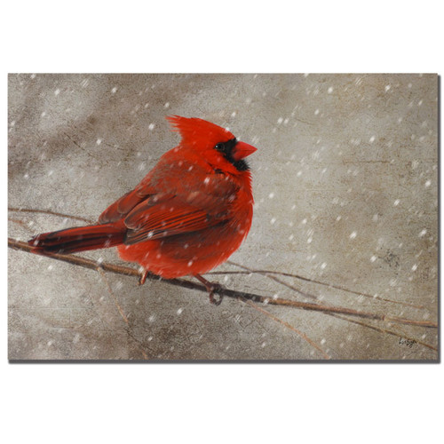 Trademark Global Lois Bryan 'Cardinal in Winter' Canvas Art [Overall Dimensions : 16x24]