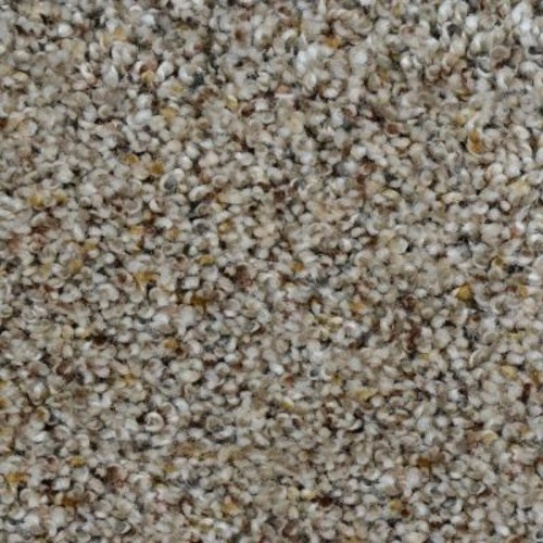 Home Decorators Collection Beach Club I - Color Tripoli Texture 12 ft. Carpet