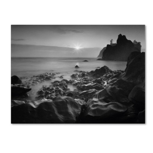 Trademark Global Moises Levy 'Sunset At Ruby Beach' Canvas Art [Overall Dimensions : 35x47]