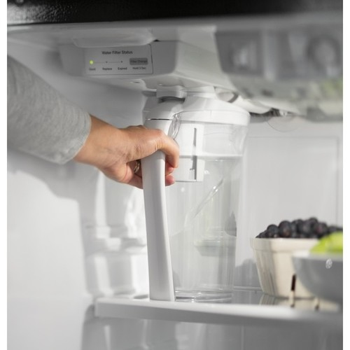 GE Series 17.5 CU Ft. Top-Freezer Refrigerator with Autofill Pitcher