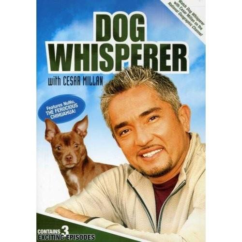 Dog Whisperer with Cesar Millan - Volume 1