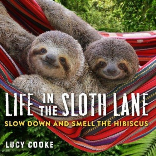 Life in the Sloth Lane : Slow Down and Smell the Hibiscus (Hardcover) (Lucy Cooke)