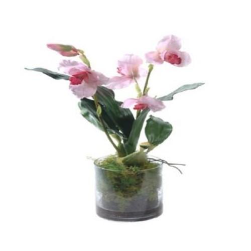 Gold Eagle USA Cymbidium Floral Arrangements in Glass Vase