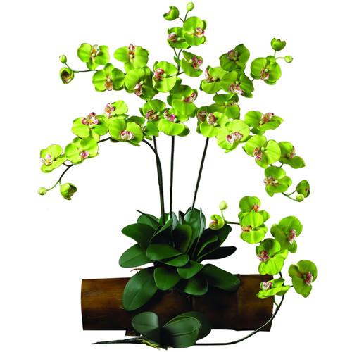 31.5 in. H Green Phalaenopsis Stem (Set of 12)