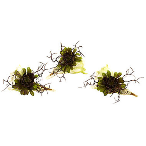 Nearly Natural Wispy Succulent With Seashell Set Of 3