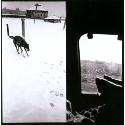We Are Lonely Animals [CD]