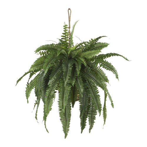 Large Boston Fern Hanging Basket by Nearly Natural