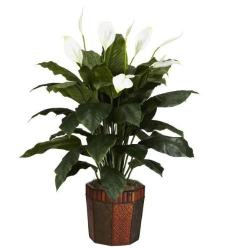 Spathyfillum w/Vase Silk Plant Spathyfillum w/Vase Silk Plant