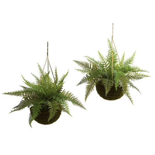 Nearly Natural Indoor Outdoor Set of Two Leather Fern with Mossy Hanging Basket