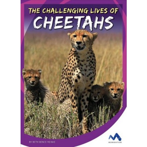 Challenging Lives of Cheetahs (Library) (Beth Bence Reinke)