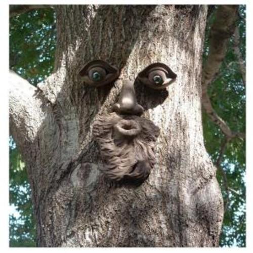 Genuine Tree Peeple Whistlin' Pete Tree Face