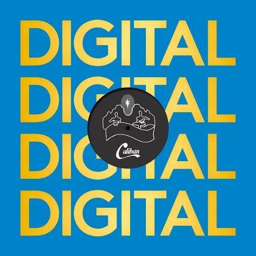 Digital Reggae [12 inch Vinyl Single]
