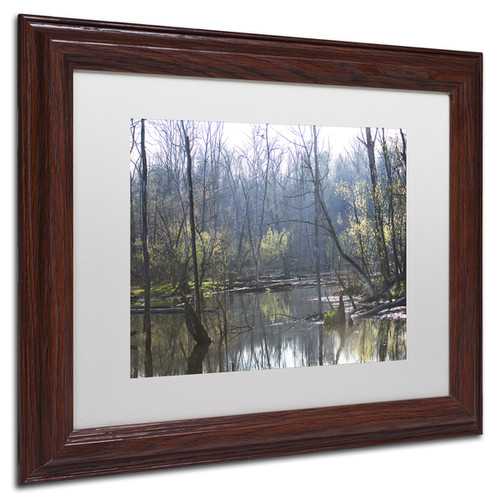Kurt Shaffer 'Springtime in the Wetlands' Matted Framed Art [option : White Matte, Wood Frame 11x14]