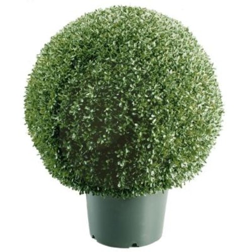 National Tree Company 22 in. Mini Boxwood Ball Shaped Artificial Topiary Tree in 9 in. Round Green Growers Pot