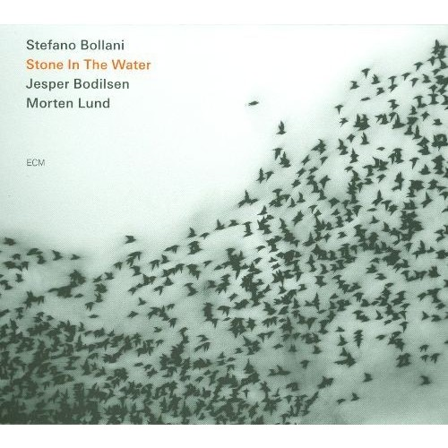 Stone in the Water [CD]