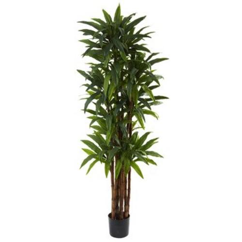 Nearly Natural 6.5' Dracaena Tree