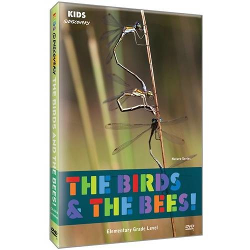 Kids @ Discovery Nature: The Birds & The Bees