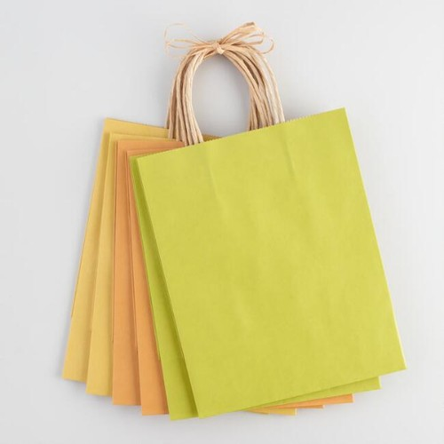 Medium Green Kraft Gift Bags Set of 6