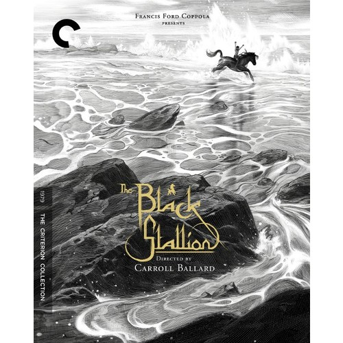 The Black Stallion [Criterion Collection] [DVD] [1979]