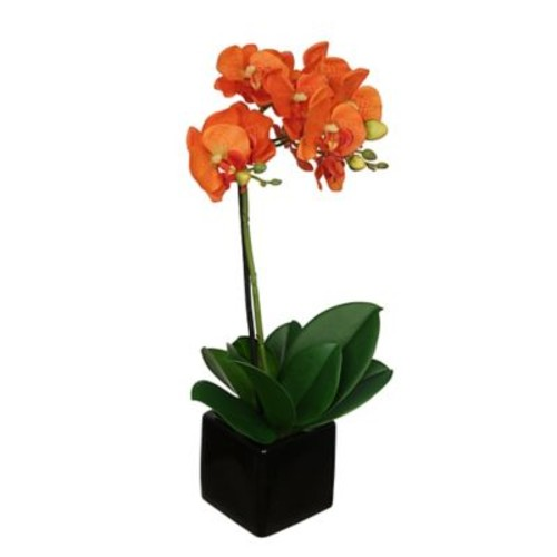 House of Silk Flowers Artificial Baby Cube Ceramic Orchid Flowers in Pot (Set of 2); Orange