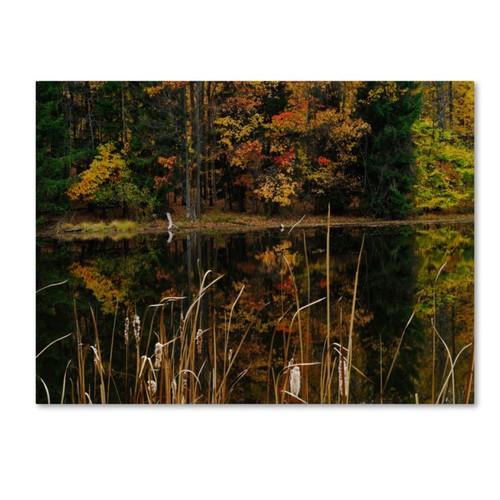 Trademark Fine Art 'Beautiful Memory' 22