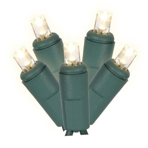 Vickerman 50 Light Wide Angle Warm White Twinkle LED light set on Green Wire [Warm White Led, 50Lt]