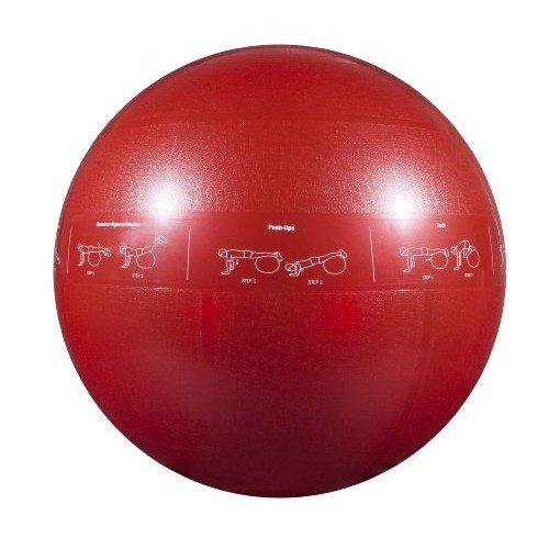 GoFit Pro Ball  65 cm