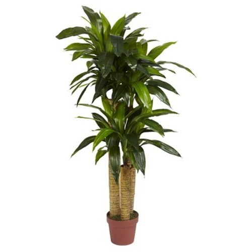 Nearly Natural Corn Stalk Dracaena Silk Plant Green (Real Touch) (4