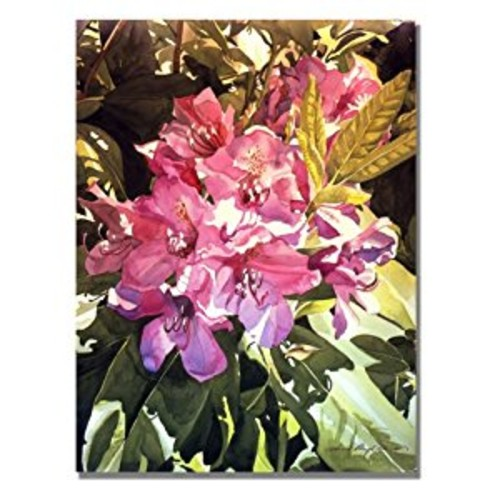 Royal Rhododendrons by David Lloyd Glover, 18x24-Inch Canvas Wall Art [18 by 24-Inch]