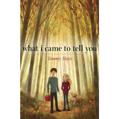 what I came to tell you (Paperback)
