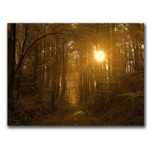 Morning Awaits II by CATeyes, 14x19-Inch Canvas Wall Art [14 by 19-Inch]
