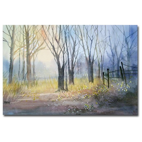 Ryan Radke 'Misty Morning' Canvas Art