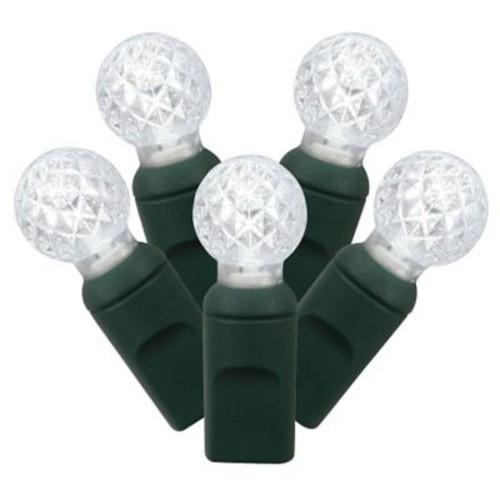 Vickerman 100 LED Light Set; Pure White
