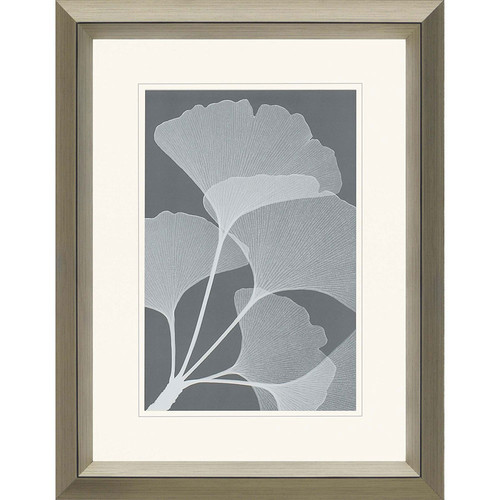 Gingkos II by Steven Meyers Framed Graphic Art