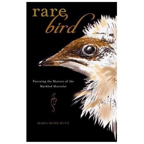 Rare Bird : Pursuing the Mystery of the Marbled Murrelet (Paperback)