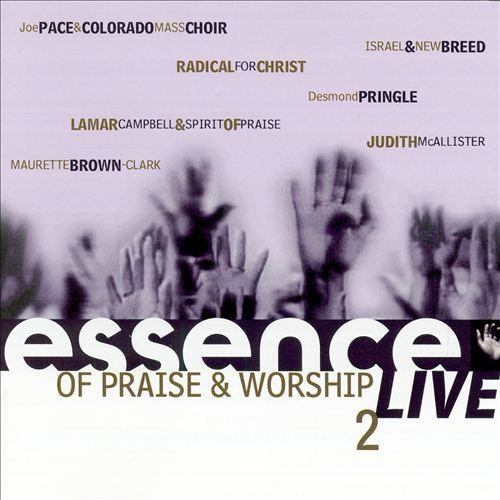 Essence of Praise and Worship, Vol. 2 [CD]