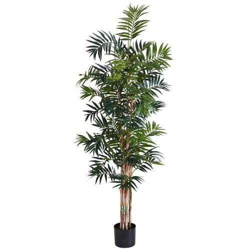 Bamboo Palm Silk Tree, 6'