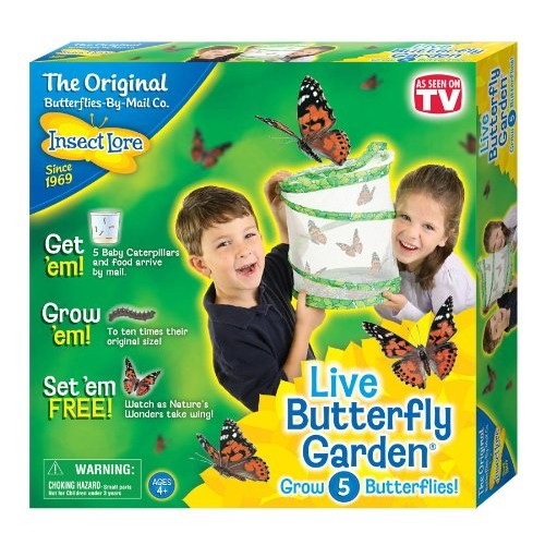 Insect Lore Butterfly Growing Kit Toy - Includes Voucher Coupon for 5 Live Caterpillars to Butterflies - SHIP LATER [Standard Packaging]