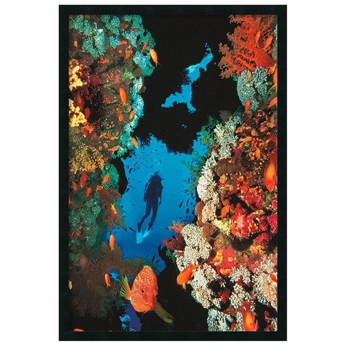 'Coral Reef' Gel-Textured Art Print