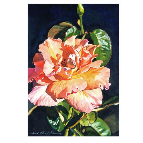 Trademark Global David Lloyd Glover 'Royal Rose' Canvas Art [Overall Dimensions : 16x24]