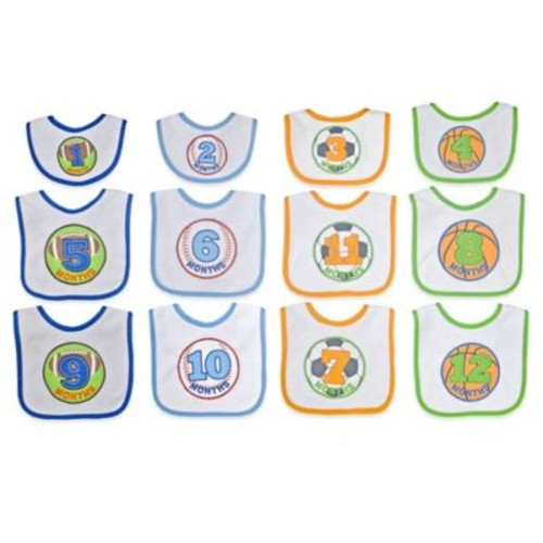 Neat Solutions 12-Piece Monthly Milestone Bib Set in Blue/Green